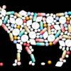 Антибиотики в мясной промышленности